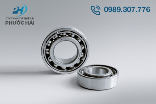 Vòng bi NSK (Angular Contact Ball Bearings)