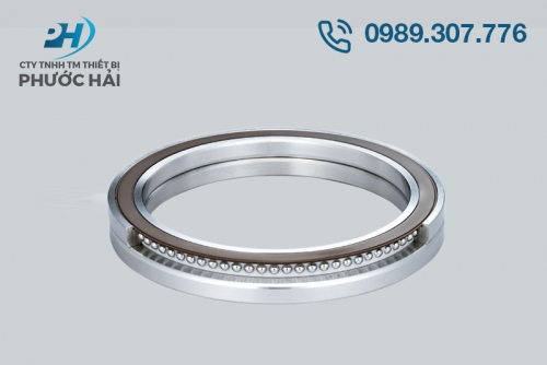 Vòng bi NSK (Bearings for Swiveling Spindle Heads used in Machine Tools)