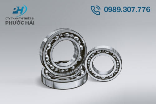 Vòng bi NSK (Deep Groove Ball Bearings)