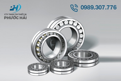 Vòng bi NSK mỏng (Spherical Roller Bearings)